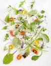 Vegetable stillife Royalty Free Stock Photo