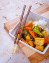 Vegetable and tofu stir fry a with asian sauce rice Royalty Free Stock Images