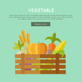 Vegetable Vector Web Banner in Flat Design.