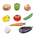 Vegetable on white background Royalty Free Stock Photo