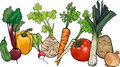 Vegetables big group cartoon illustration of food object Royalty Free Stock Photo