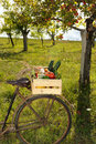 Vegetables bike four Royalty Free Stock Photo