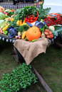 Vegetables on cart Royalty Free Stock Images