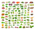 Vegetables collection isolated on white background Stock Images