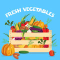 Vegetables Colored Composition Royalty Free Stock Photo