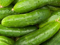 Vegetables cucumbers Royalty Free Stock Photo