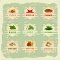 Vegetables food labels garlic and tomato potato basil chilly pepper ana cucumber on vintage background Royalty Free Stock Photography