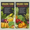 Organic market banner with fruits and vegetables