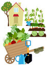 Vegetables garden Royalty Free Stock Photo