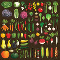 Vegetables great collection of the clip art Stock Photography