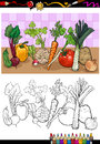 Vegetables group illustration for coloring book or page cartoon of food object children education Stock Photos