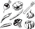 Vegetables illustration Royalty Free Stock Images