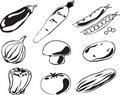 Vegetables illustration Stock Image