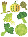 Vegetables Illustration Isolated White Background Stock Photo