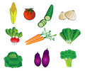 Vegetables illustrations Stock Photography