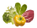 Vegetables ingredients isolated green salad leaves and yellow pepper Royalty Free Stock Photo