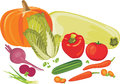 Vegetables isolated on the white illustration Stock Photo