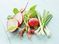 Vegetables leek radish on the wooden background shallow dof Royalty Free Stock Photography