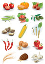 Vegetables nuts and species Stock Image