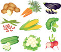 Vegetables photo realistic detailed set Royalty Free Stock Photos