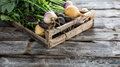 Vegetables with roots in wooden crate for genuine sustainable agriculture Royalty Free Stock Photo