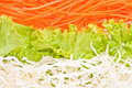 Vegetables salad fresh background Stock Image