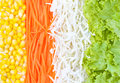 Vegetables salad fresh background Royalty Free Stock Images