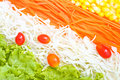 Vegetables salad fresh background Royalty Free Stock Photo