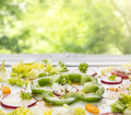 Vegetables salad with green paprika and radishes on summer background in garden Stock Photos