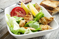 Vegetables salad with grilled chicken breast homemade caesar and toast Stock Image