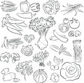 Vegetables set vector illustration of in line art mode Royalty Free Stock Photos