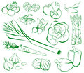 Vegetables vector illlustration of in outlines Stock Images