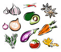 Vegetables vector illustrations healthy eating Stock Photos