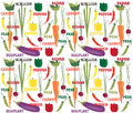 Vegetables words pattern of and with pepper radish scallion peas eggplant and carrot Royalty Free Stock Photography