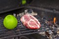 Vegetarian or carnivore green apple meat Royalty Free Stock Image