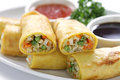 Vegetarian egg rolls Royalty Free Stock Photo