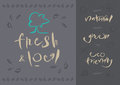 Vegetarian fresh local calligraphy illustration and eps vector file hi res jpeg included Stock Photography
