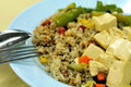 Vegetarian fried rice and bean curd cuisine Royalty Free Stock Image