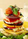 Vegetarian Stack Royalty Free Stock Images