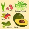 Vegetarian superfood healthy vegetable eco food fresh organic traditional gourmet nutrition vector illustration.