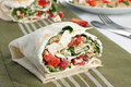 Vegetarian wrap sandwich Royalty Free Stock Photos