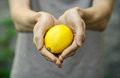 Vegetarians and fresh fruit and vegetables on the nature of the theme: human hand holding a lemon on a background of green grass Royalty Free Stock Photo