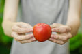 Vegetarians and fresh fruit and vegetables on the nature of the theme: human hand holding a tomato on the background of green gras Royalty Free Stock Photo