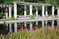 Vegetation corridor in zhongshan botanical garden Stock Photography
