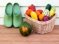 Veggie basket with garden clogs Royalty Free Stock Photo