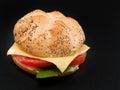 Veggie burger isolated on black background Royalty Free Stock Photography
