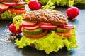 Veggie burgers green salad fresh cucumber tomato radish and radish on dark background Royalty Free Stock Images
