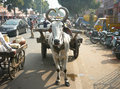vehicles on streets of Jaipur, Rajasthan, India