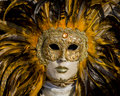Venetian Carnival Mask Stock Photos