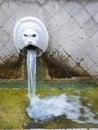 Venetian Fountain Royalty Free Stock Photo